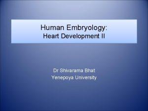 Human Embryology Heart Development II Dr Shivarama Bhat