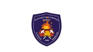 RESCUE AND FIREFIGHTING SERVICES Infrastructure of rescue and