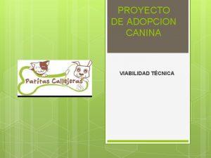 PROYECTO DE ADOPCION CANINA VIABILIDAD TCNICA ALCANCES Analizar