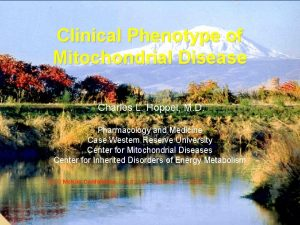 Clinical Phenotype of Mitochondrial Disease Charles L Hoppel