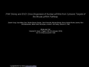PIWI Slicing and EXD 1 Drive Biogenesis of