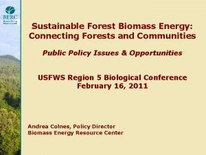 BestinClass Community Scale Biomass Systems Case Study Series