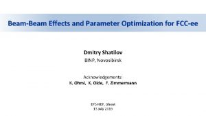 BeamBeam Effects and Parameter Optimization for FCCee Dmitry