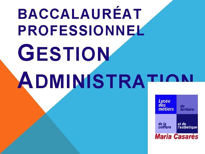 BACCALAURAT PROFESSIONNEL G ESTION A DMINISTRATION LA RNOVATION