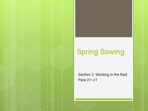 Spring Sowing Section 2 Working in the field