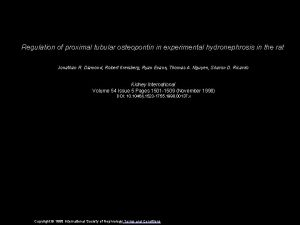 Regulation of proximal tubular osteopontin in experimental hydronephrosis