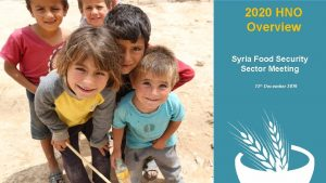 2020 HNO Overview Syria Food Security Sector Meeting