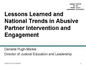 Lessons Learned and National Trends in Abusive Partner