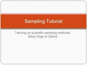 Sampling Tutorial Training on scientific sampling methods Stray