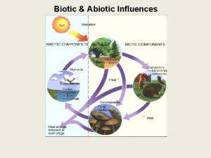 Biotic Abiotic Influences Biotic Abiotic Influences Ecosystem all