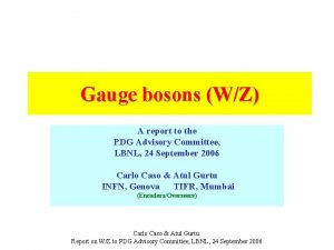 Gauge bosons WZ A report to the PDG