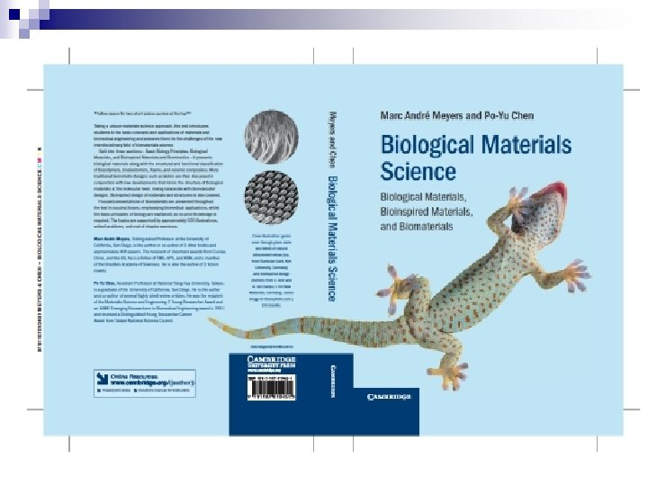 BIOLOGICAL MATERIALS SCIENCE Biological Materials Bioinspired Materials and