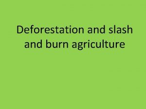 Deforestation and slash and burn agriculture Definition and