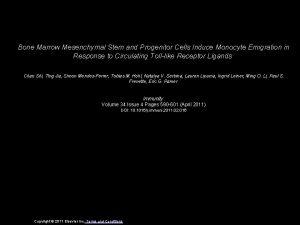 Bone Marrow Mesenchymal Stem and Progenitor Cells Induce
