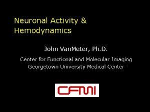 Neuronal Activity Hemodynamics John Van Meter Ph D