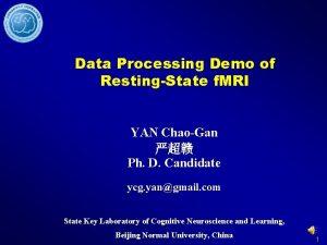Data Processing Demo of RestingState f MRI YAN