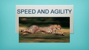 SPEED AND AGILITY What does speed consist of