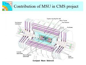 Contribution of MSU in CMS project Contribution of
