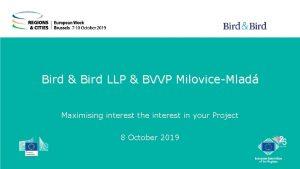 Bird Bird LLP BVVP MiloviceMlad Maximising interest the