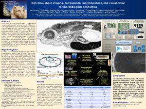 Highthroughput imaging computation morphometrics and visualization for morphological