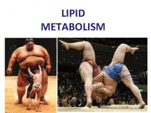 LIPID METABOLISM Why Fatty Acids For energy storage