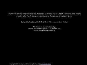 Murine Gammaherpesvirus68 Infection Causes MultiOrgan Fibrosis and Alters