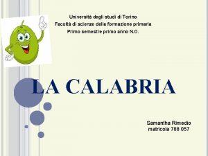 Universit degli studi di Torino Facolt di scienze