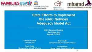 State Efforts to Implement the NAIC Network Adequacy