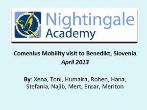 Comenius Mobility visit to Benedikt Slovenia April 2013