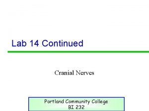 Lab 14 Continued Cranial Nerves Portland Community College