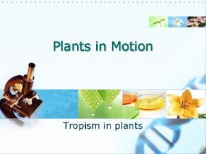 Plants in Motion Tropism in plants Background A