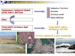 Gli agroecosistemi e le criticit Clima Vulnerabilit intrinseca