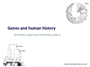 Genes and human history Gil Mc Vean Department