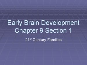 Early Brain Development Chapter 9 Section 1 21