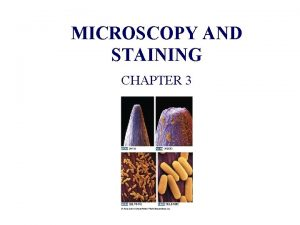 MICROSCOPY AND STAINING CHAPTER 3 CHAPTER 3 MICROSCOPY