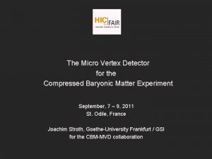 The Micro Vertex Detector for the Compressed Baryonic