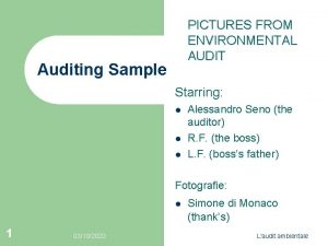 PICTURES FROM ENVIRONMENTAL AUDIT Auditing Sample Starring l