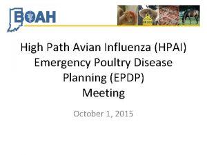 High Path Avian Influenza HPAI Emergency Poultry Disease