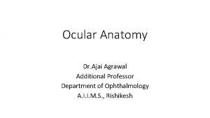Ocular Anatomy Dr Ajai Agrawal Additional Professor Department