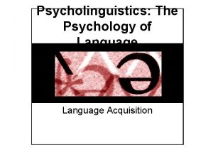 Psycholinguistics The Psychology of Language Acquisition Language Acquisition