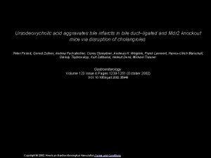 Ursodeoxycholic acid aggravates bile infarcts in bile ductligated