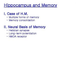 Hippocampus and Memory I Case of H M