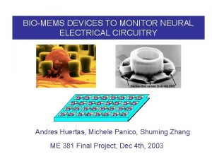 BIOMEMS DEVICES TO MONITOR NEURAL ELECTRICAL CIRCUITRY Andres