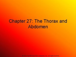 Chapter 27 The Thorax and Abdomen 2014 The