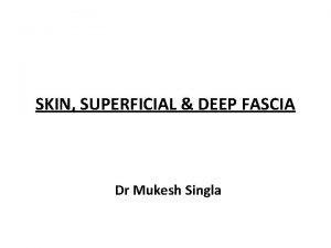 SKIN SUPERFICIAL DEEP FASCIA Dr Mukesh Singla SKIN