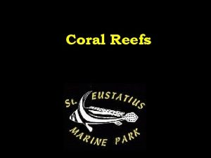 Coral Reefs Understanding Coral What is coral Here