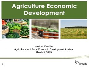 Heather Candler Agriculture and Rural Economic Development Advisor