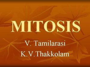 MITOSIS V Tamilarasi K V Thakkolam MITOSIS n