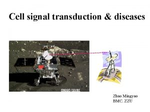 Cell signal transduction diseases moon rover Zhao Mingyao