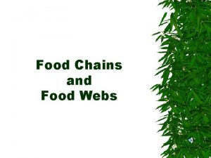 Food Chains and Food Webs Producers ALL LIVING